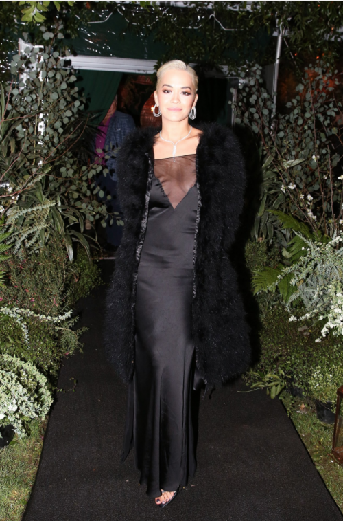 Rita Ora pictured wearing the silk slip dress in gown length.